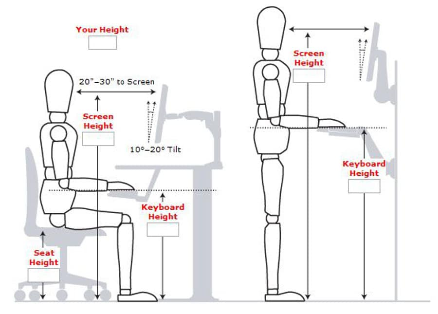 Ergonomic office posture for sitting and standing desks